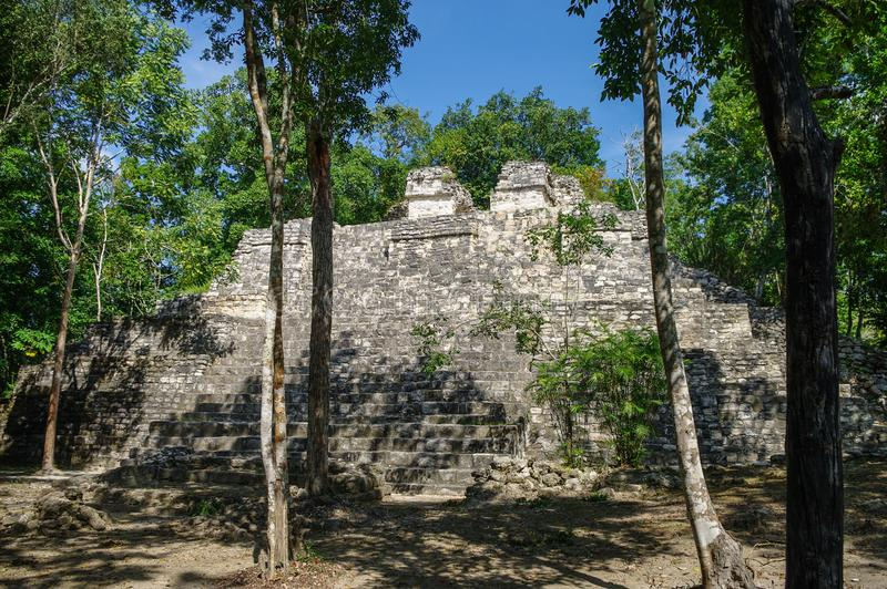 Sight of the Mayan pyramid in ruins in the archaeological Balamku enclosure in the reservation of the biosphere of Calakmul, Camp royalty free stock photo