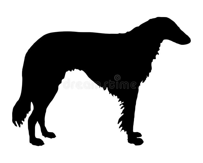 Sighthound dai capelli lunghi royalty illustrazione gratis