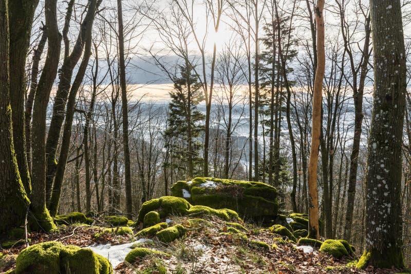 Sightseeing Platform Aussichtsstein-Frauenberg near Grafenau in the bavarian forest, Germany royalty free stock photo