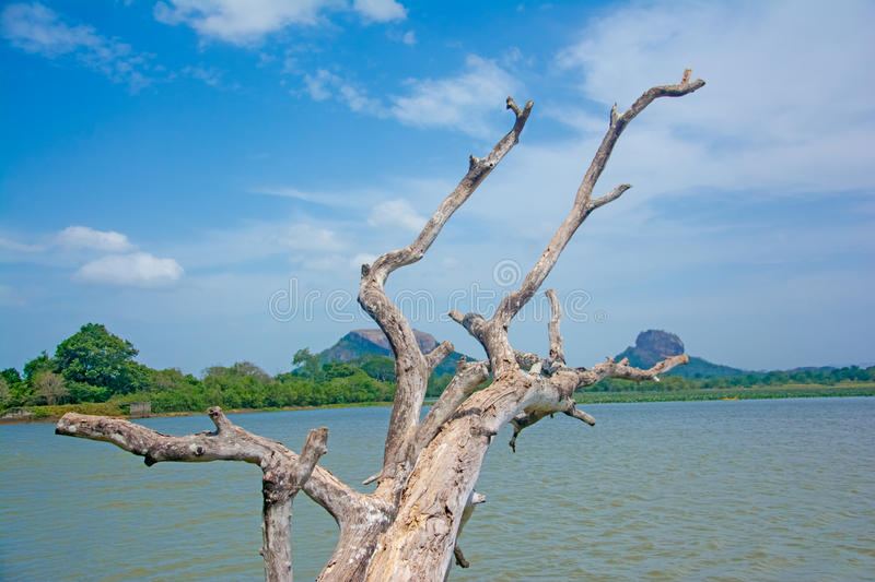 Sigiriya Rock Fortress View From Thalkote Lake. Spending the evening time around Thalkote lake is a popular way among the tourists royalty free stock photos