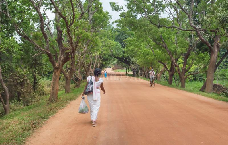 Lonely woman walking on rural road to village in tropical forest area. SIGIRIYA, SRI LANKA - JAN 9, 2018: Lonely woman walking on rural road to village in royalty free stock photography