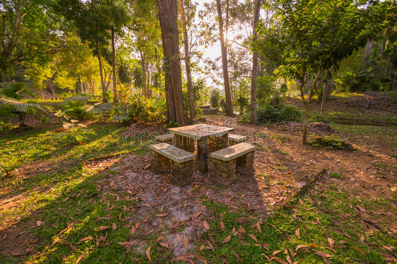 Sigle table in the forests stock images