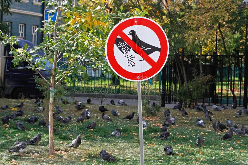 A sign `Do not feed the pigeons` on the background of a flock of birds stock photos