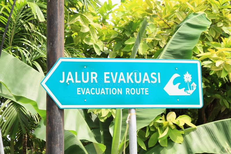Sign of evacuation route for case of tsunami. Arrow sign of evacuation route - Jalur Evakuasi for case of tsunami with tropical plants behind royalty free stock image