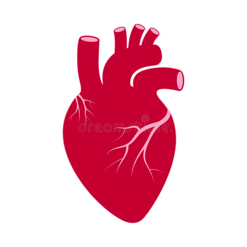 Human heart graphics sign royalty free illustration