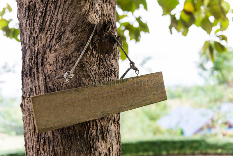 Sign hung on the tree. Wooden Sign hung on the tree stock photography