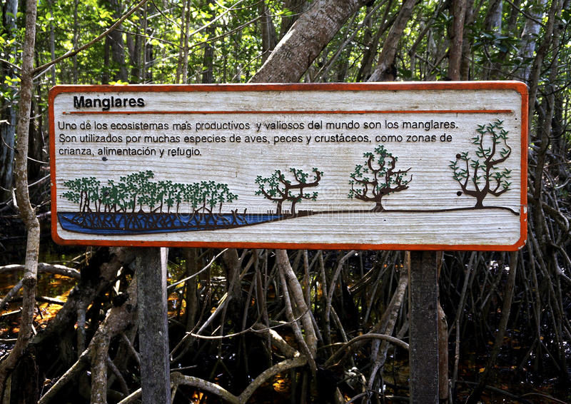 Sign at a protected mangrove forest stock images