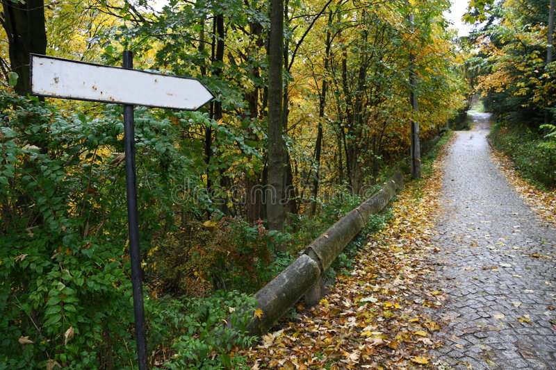 Download Sign On A Road Covered By Leaves Stock Photo - Image of info, frame: 6836750
