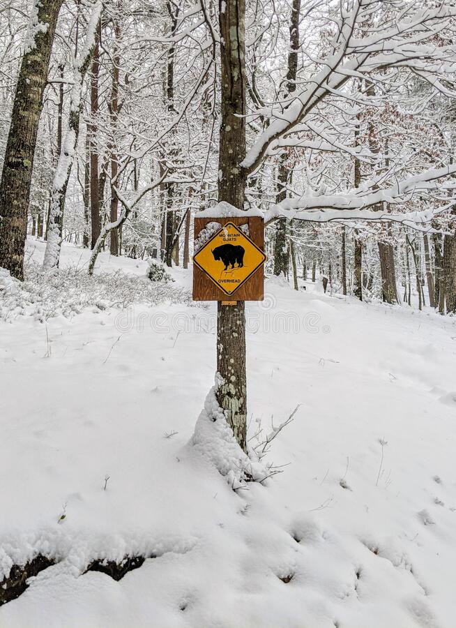 Sign in the  Snow royalty free stock images