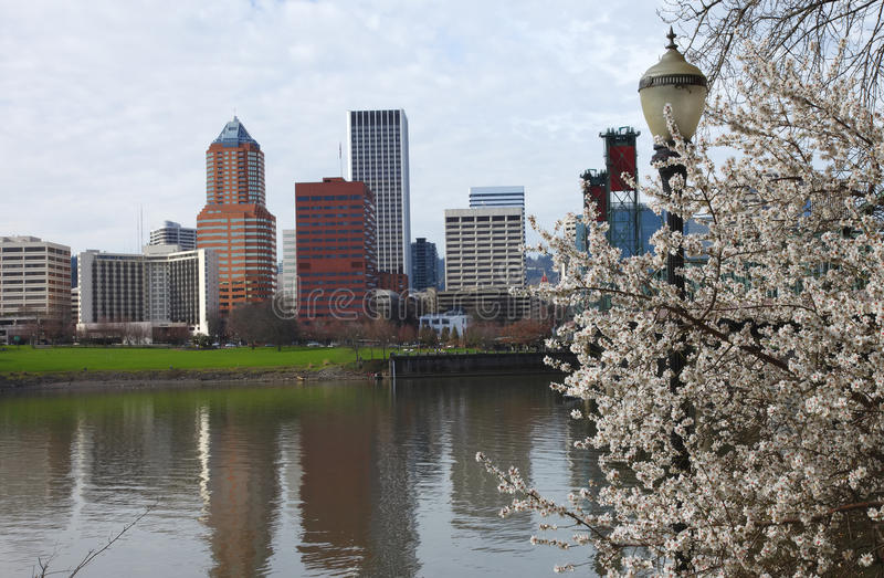 Sign of Spring, Portland Oregon. royalty free stock photo
