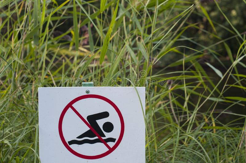 Sign swimming is prohibited. Prohibiting sign at the pond. Summertime stock images
