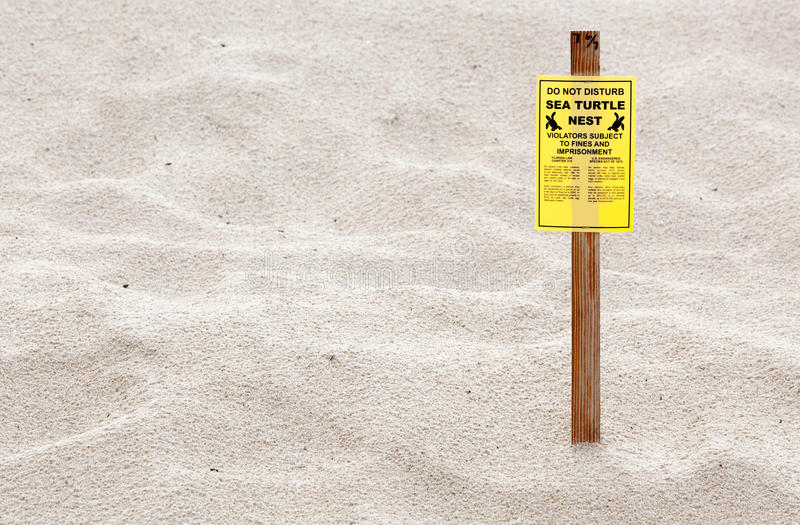 Download Turtle Nesting Sign stock image. Image of nest, beach - 29964913