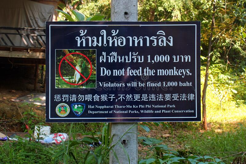 Sign warns visitors against feeding the monkeys in Phi Phi Don, Thailand. Phi Phi Don, Thailand - December 6, 2019: Sign warns visitors against feeding the stock image