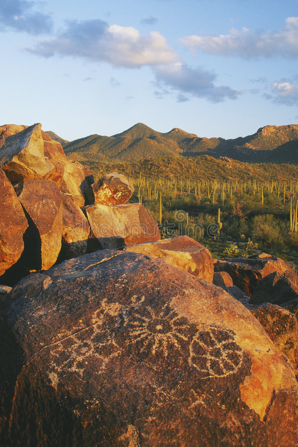 Signal Hill in Saguaro National Park stock images