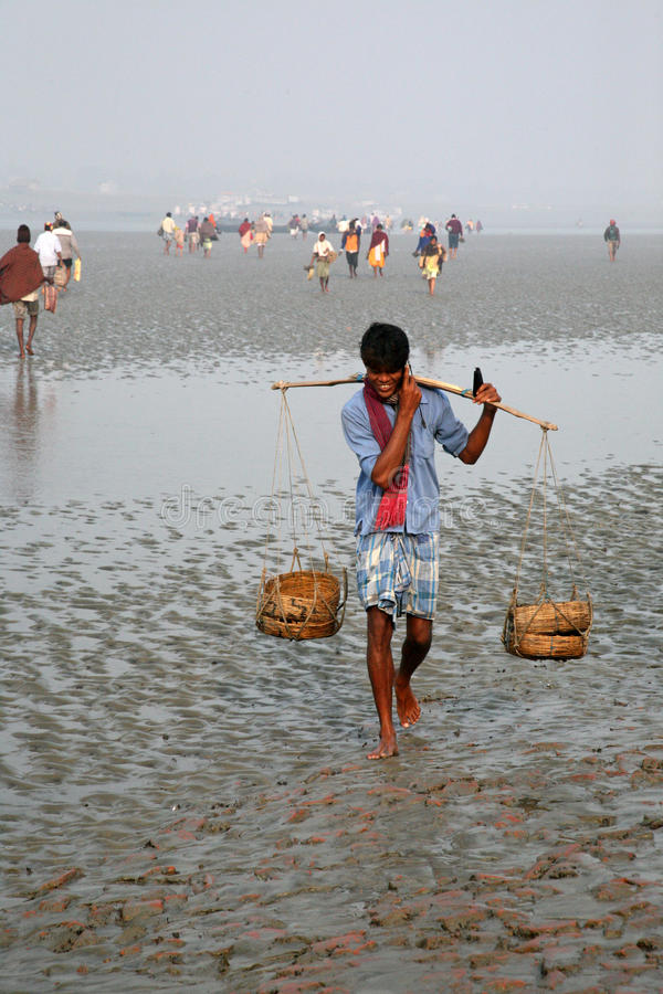 The signal of mobile phone covers and most remote parts of the Sundarbans jungles, India. The signal of mobile phone covers and most remote parts of the stock photos