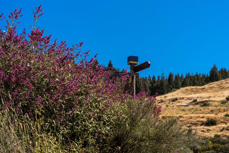 Signalisez sur un sentier piéton par les montagnes de mamie Canaria photos libres de droits