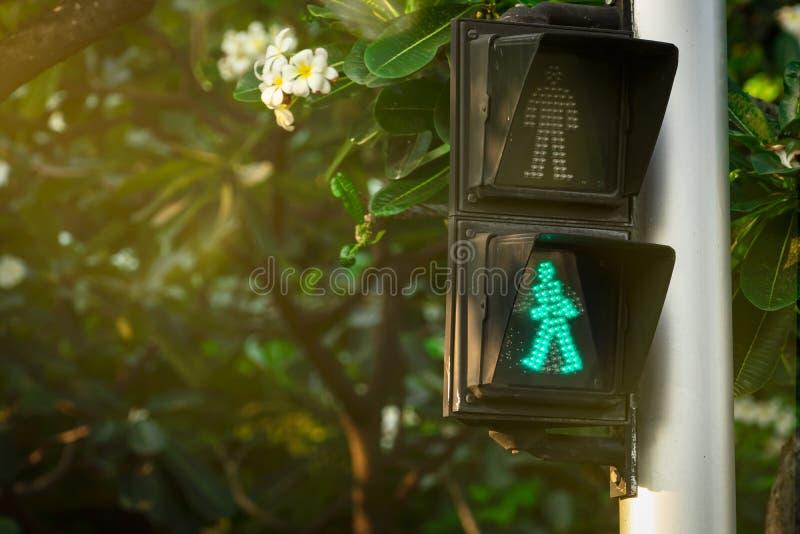 Signaux piétonniers sur le poteau de feu de signalisation Signe de passage pour piétons pour que le coffre-fort marche dans la vi photo libre de droits