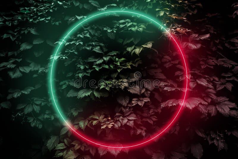 Signe abstrait de cadre brillant néon en forme de cercle, arrière-plan science-fiction futuriste avec lumières rouge-vert brillan illustration de vecteur