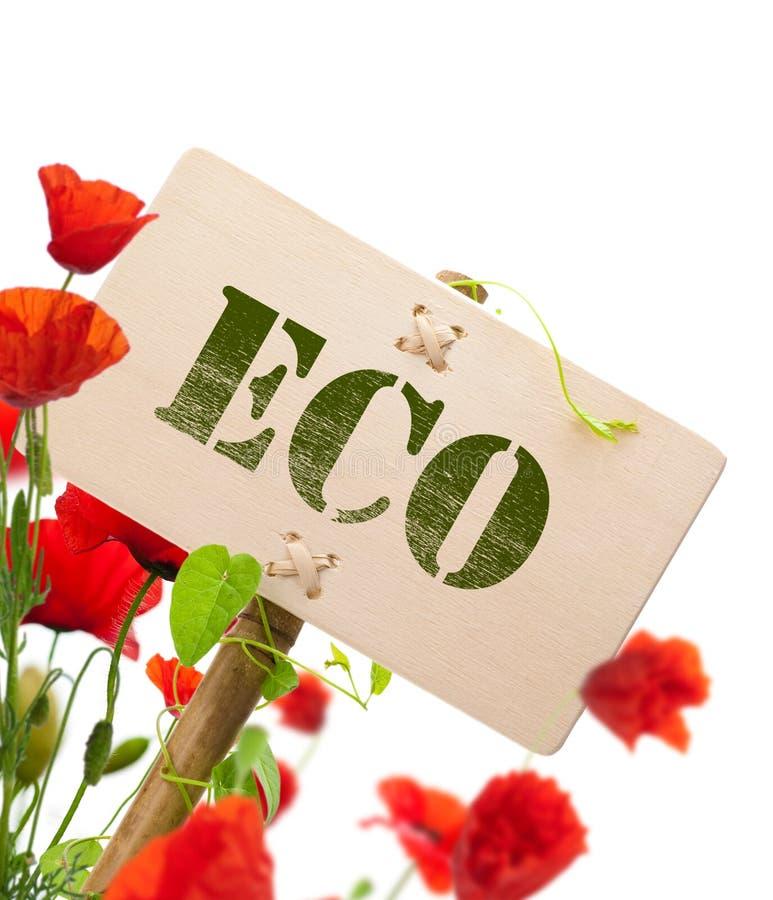 Signe d'Eco, plante verte et pavots images stock