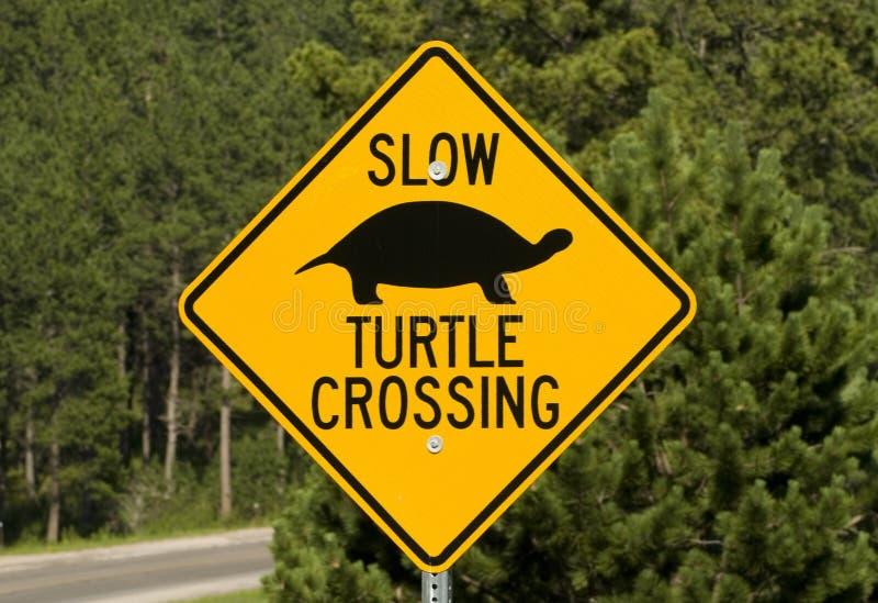 Signe de croisement de route de tortue photographie stock libre de droits