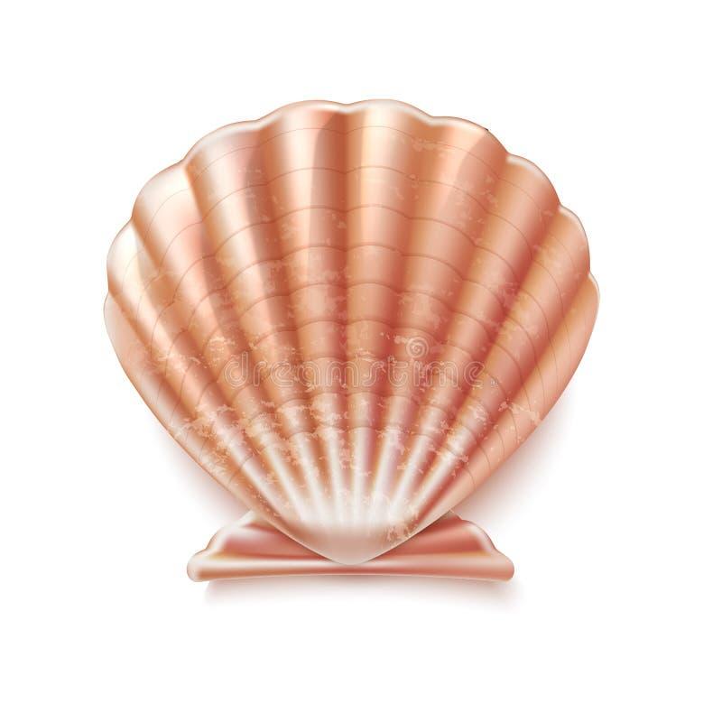 Signe de luxe de coquille de mère de coquillage de perle de vecteur illustration de vecteur