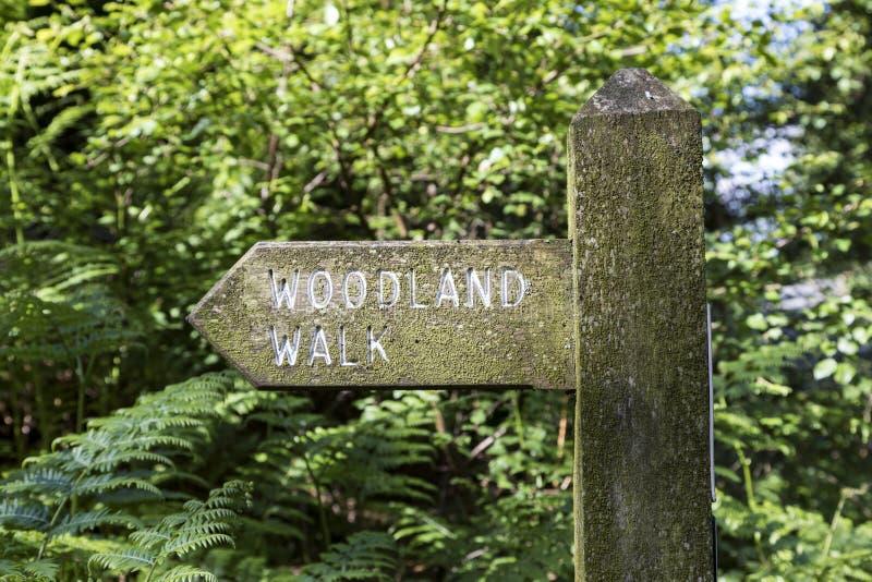 Signe de promenade de région boisée photo libre de droits