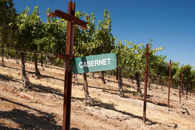 Signe de raisin de Cabernet photographie stock libre de droits