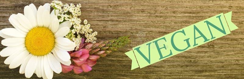 Signe de Vegan photographie stock libre de droits