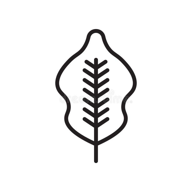 Signe et symbole de vecteur d'icône de bouleau d'isolement sur le fond blanc illustration libre de droits