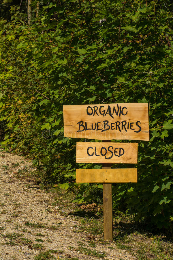 Signe organique de myrtille photo libre de droits