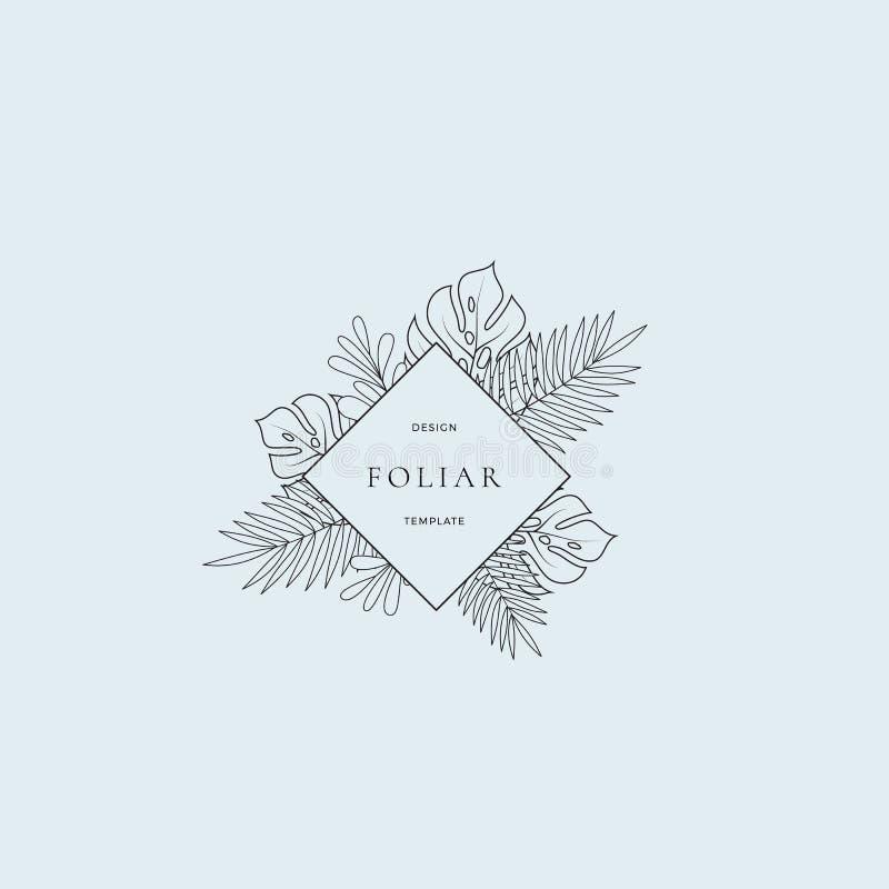 Signe ou Logo Template tropical de boutique de mode de feuilles Feuillage de Monstera avec la frontière de losange et chic abstra illustration de vecteur