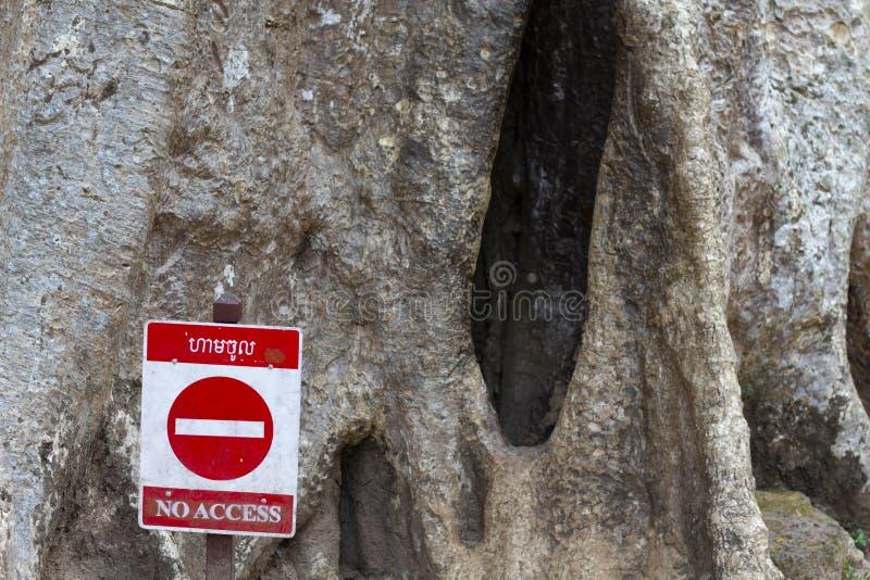 Signe rouge d'arrêt par le vieil arbre avec la cavité Vieil arbre avec l'écorce rugueuse et trou dans le tronc Interdiction pour  image stock