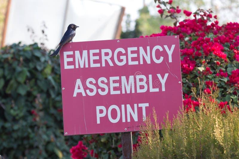 Signe rouge de point d'assemblée de secours photo libre de droits