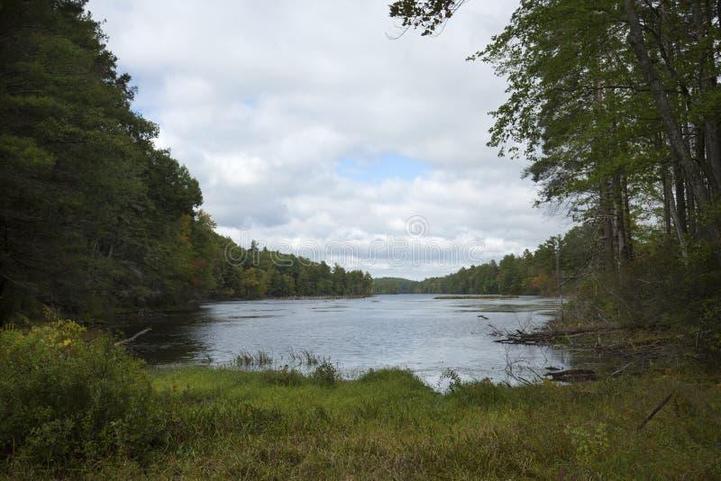 Signes tôt de la chute à l'étang casse-cou dans l'union, le Connecticut photos libres de droits