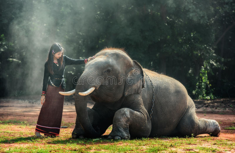 Signora alla moda tradizionale tailandese con l'elefante fotografia stock