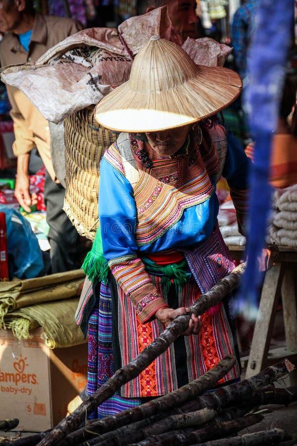 Signora anziana del mong del fiore sta selezionando una canna da zucchero al mercato di BAC ha, Lao Cai, Vietnam fotografia stock libera da diritti