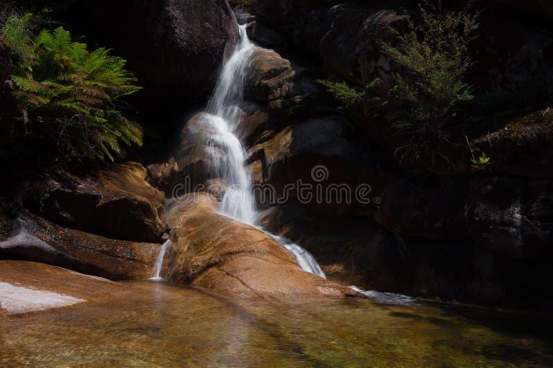 Signora Bath Falls - Buffalo di Mt fotografia stock