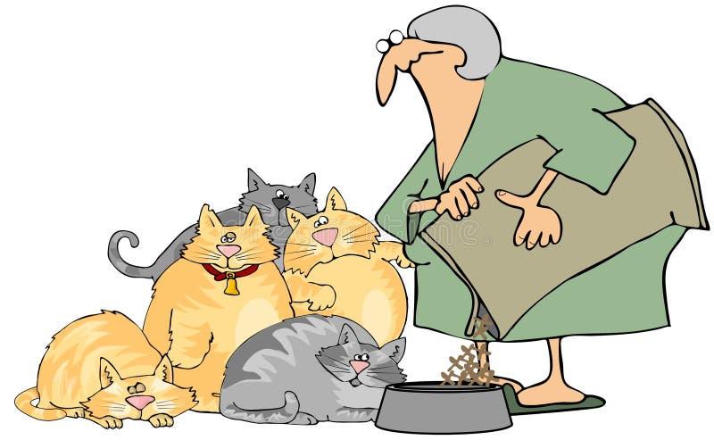 Signora del gatto illustrazione di stock