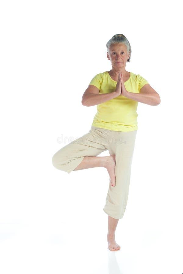 Signora di yoga fotografia stock
