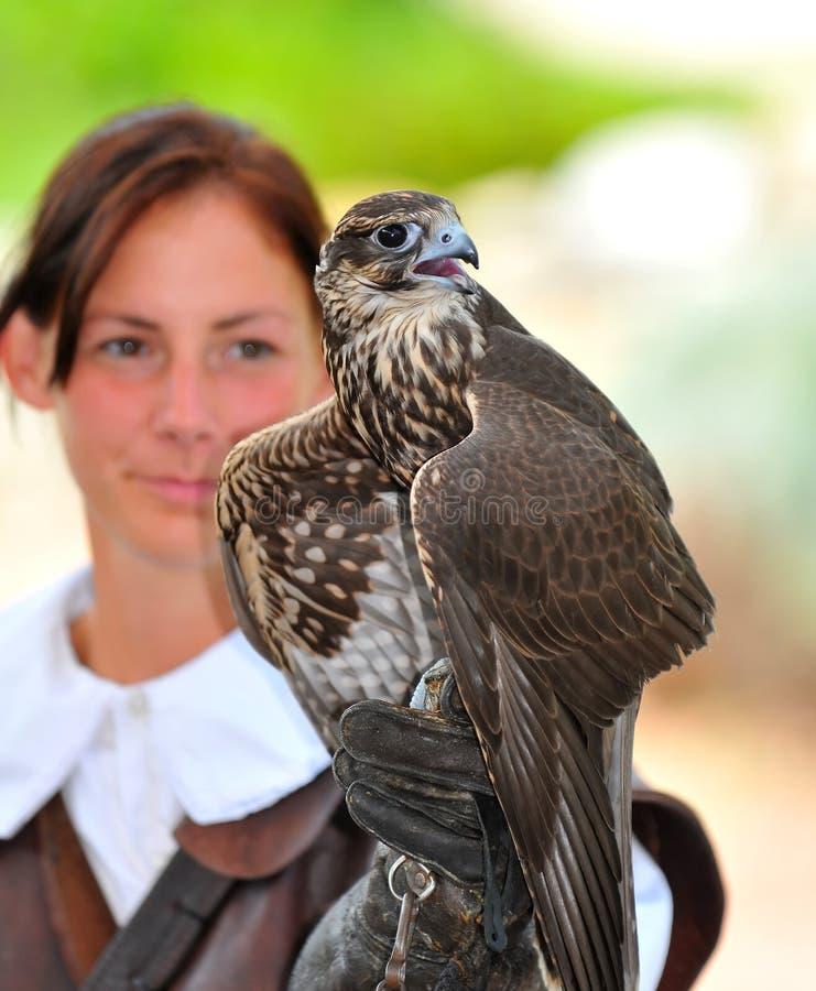 Signora ed il falco immagine stock libera da diritti
