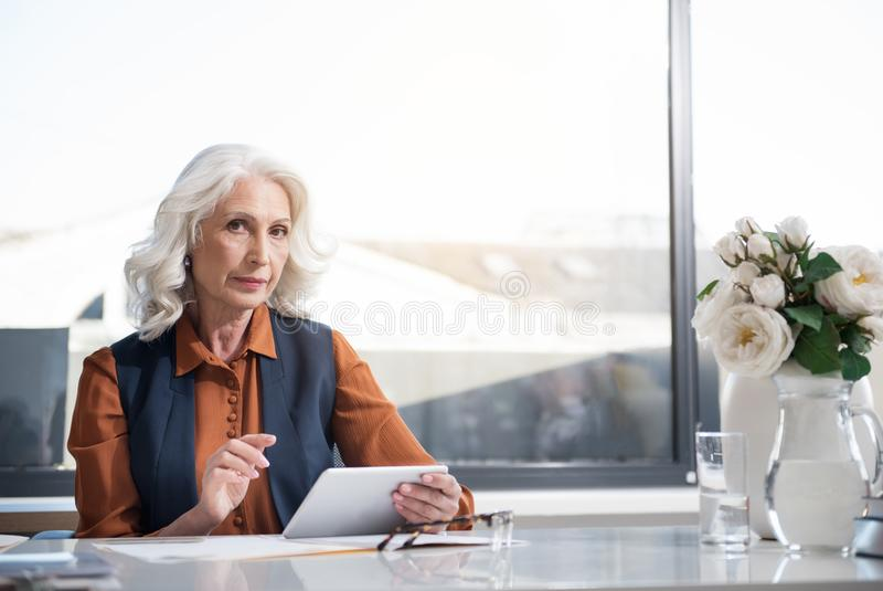 Signora invecchiata seria alla moda sta lavorando in ufficio leggero fotografia stock
