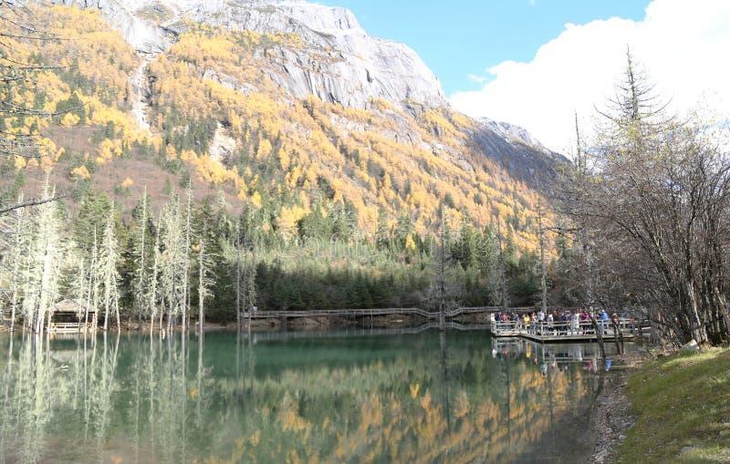 Siguniangshan Nationaal Park in Sichuan, China stock foto's