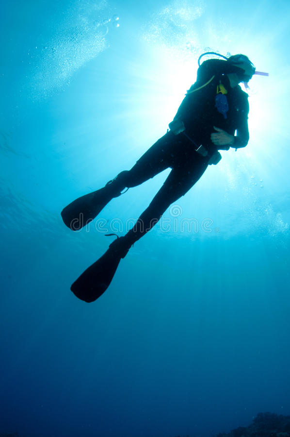Sihlouetted scuba divers