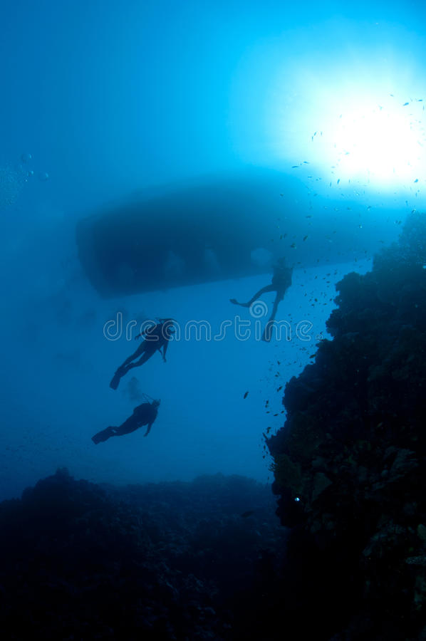 Download Sihlouetted scuba divers stock photo. Image of tank, divers - 24555440