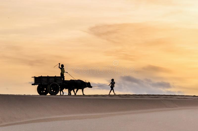 Sihouette-Kinder auf Sanddünen lizenzfreie stockfotos