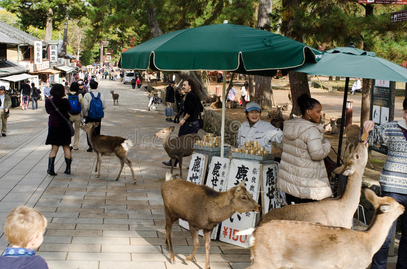 Download Sika Deer Feeding Booth In Nara Editorial Photography - Image: 24793207