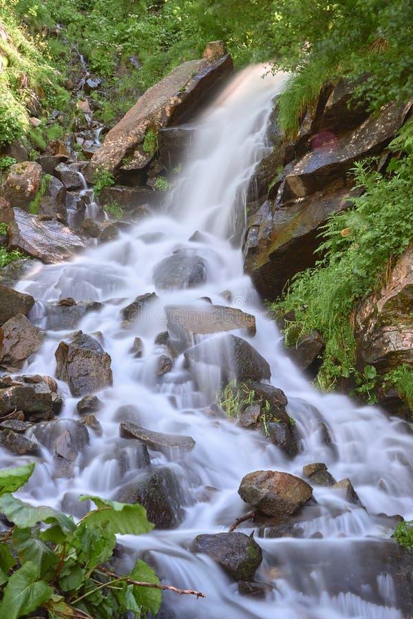 Siklawa i jasna rzeka w halnym strumieniu w zielonym skalistym lasowym pionowo wizerunku obrazy stock