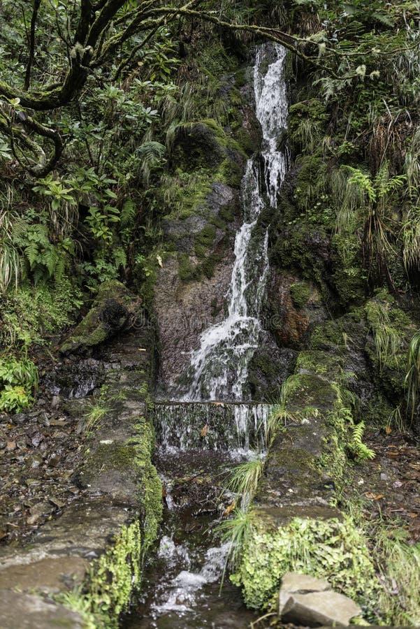 Siklawa na Madeira wyspie zdjęcie stock