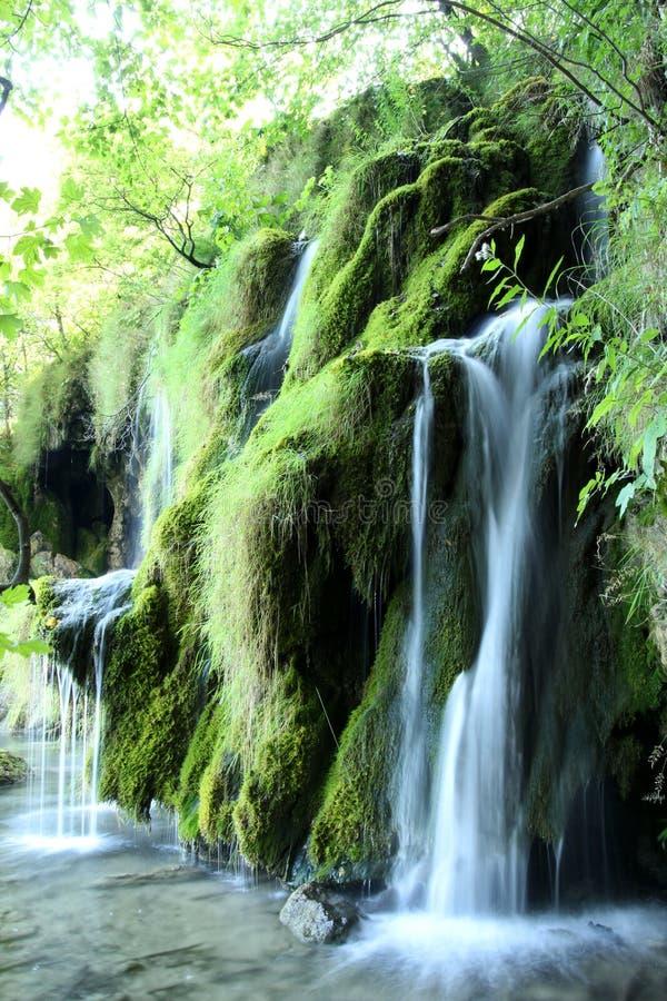 Siklawa od Plitivice parka w Chorwacja zdjęcie stock