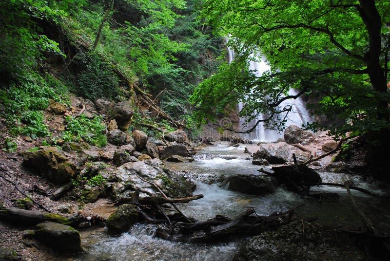 Siklawa w ciemniutkim lesie obrazy royalty free